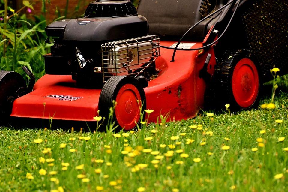 Koszenie trawnika. Jak i kiedy kosić trawę?
