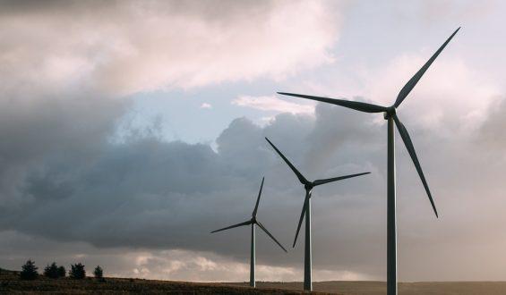Odnawialne źródła energii w Polsce. Z czego korzystamy? Jakie są prognozy?